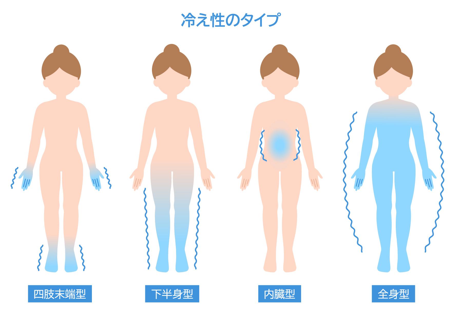 内臓 型 冷え性