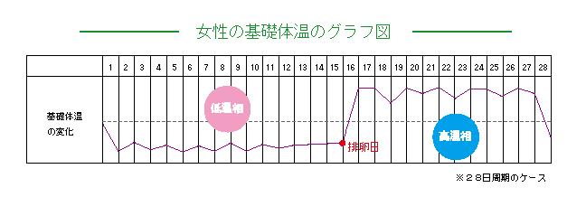 女性の基礎体温のグラフ図