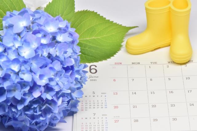 6月と紫陽花